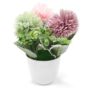 Imagen de Planta con flores de crisantemos