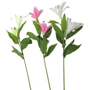 Imagen de Ramo de 2 iris, con pimpollo, varios colores