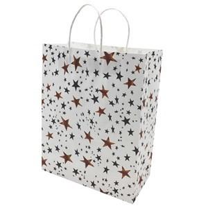 Imagen de Bolsa de regalo grande, varios diseños, PACK x12