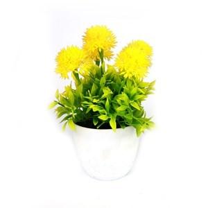 Imagen de Planta con flores
